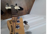 Fender American Special Precision Bass (49545)