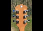Fender Artist Design Tim Armstrong Hellcat Acoustic