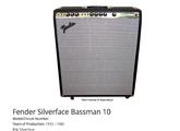 Fender Bassman Ten