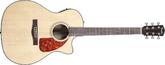 Fender CA-360SCE