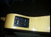 Fender Casa Grande