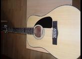 Fender CD-100 12 String