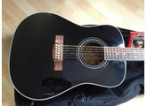 Fender CD-160SE 12-String [2009-2010]