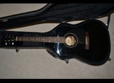 Fender DG-11E