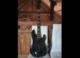 Fender Duff McKagan Signature P-Bass