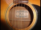 Fender F 15