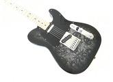 Fender FSR 2012 Standard Telecaster Black Paisley
