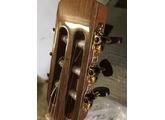 Fender GD-47SCE
