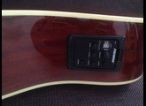 Fender Kingman Bass SCE [2009-2012]