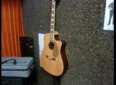 Fender Kingman SCE [2008-2011]