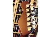 Fender Malibu SCE [2008-2011]