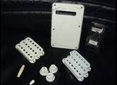 Fender Original Stratocaster Accessory Kit Aged White*