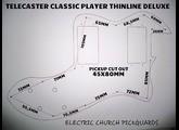 Fender Pickguard Telecaster Thinline (98287)