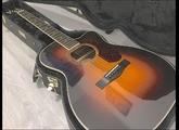 Fender PM-3 Deluxe Triple-0