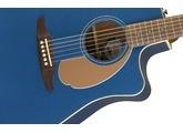 Fender Redondo Player