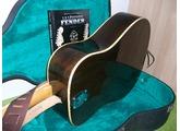 Fender Shenandoah 12 [1965-1971]
