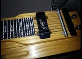 Fender Steel King