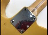 Fender Telecaster w/ Bigsby (1971)