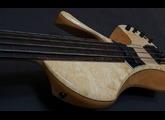 Fodera Guitars Victor Wooten Bow Bass