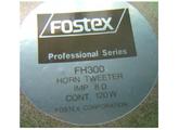 Fostex FH300