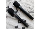 Fostex MC10 Stereo Mikrofonset