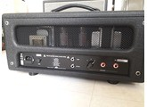 FX Amplification DG-20