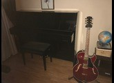 Gibson ES-135 Limited Edition (24349)