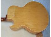 Gibson ES-175 DN