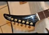 Gibson Explorer - Ebony