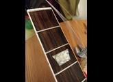 Gibson Firebird (1964)
