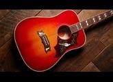 Gibson Frank Hannon Love Dove