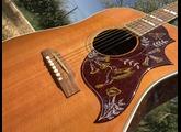 Gibson Hummingbird (1965)