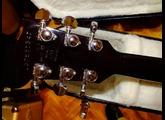 Gibson Les Paul Standard 2013 w/ Premium Flame