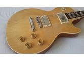 Gibson Les Paul Standard Raw Power