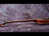 Gibson Rich Robinson ES-335