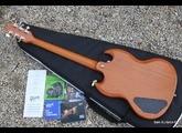 Gibson SG Naked (51424)