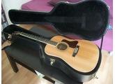 Gibson Songmaker DSR