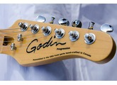Godin Progression Boutique USB