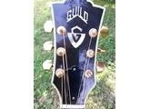 Guild F-50