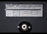 Hiwatt Fane Speakers