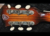 Hofner Guitars 457