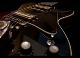 Hofner Guitars 4579