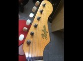 Hofner Guitars colorama special