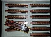 Hohner Blues Harp MS - C Do