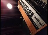 Hohner String Melody II (8549)