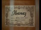 Ibanez AEG10E