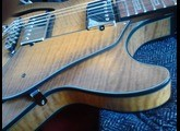 Ibanez AGS83B