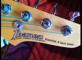 Ibanez Roadstar II Series*