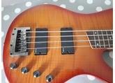 Ibanez SRX500