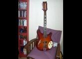 Italia Guitars Rimini 12